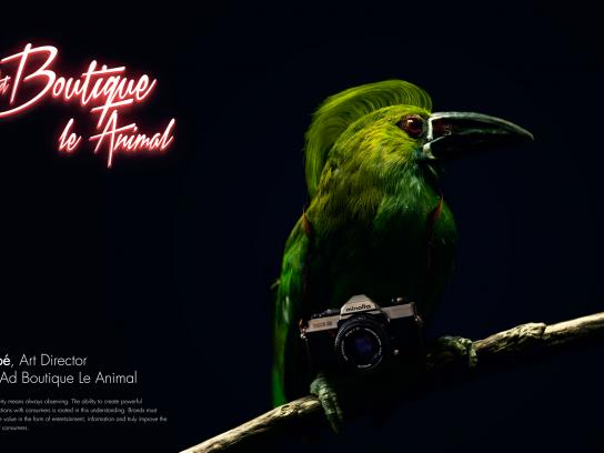 Ad Boutique Le Animal Print Ad - Noé, Art Director
