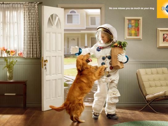 Pedigree Print Ad - Astronaut