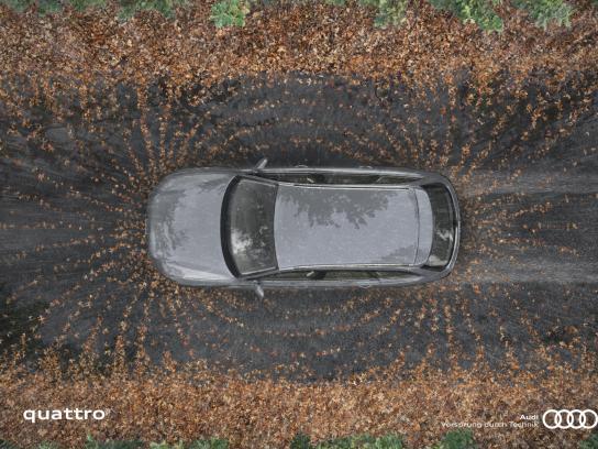 Audi Print Ad -  Fields, 2