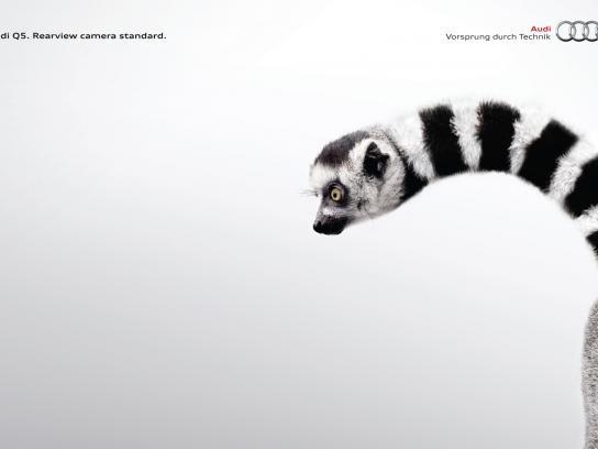 Audi Print Ad -  Lemur