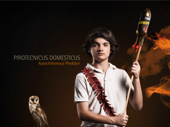 Dirección Nacional de Bomberos Print Ad - Depredadores autóctonos, 5