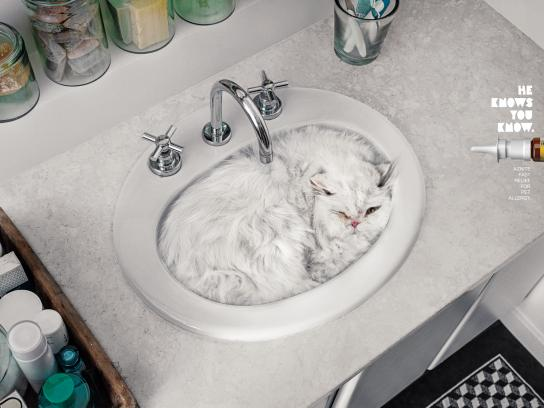Aznite Print Ad - Cat Bath