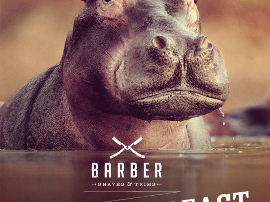Barber Print Ad -  Tame the beast, Hippo