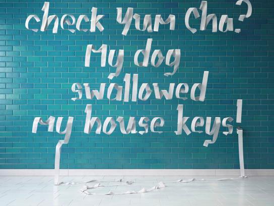 Bayer Print Ad - Bad Dog