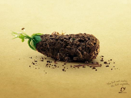 Bio Suisse Print Ad -  Eggplant