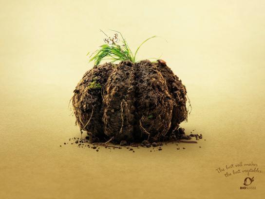 Bio Suisse Print Ad -  Pumpkin