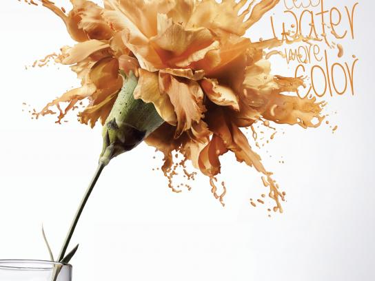Cedro Textil Print Ad -  Flower, 3