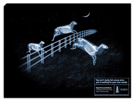 Migdal Print Ad -  X-ray sheep
