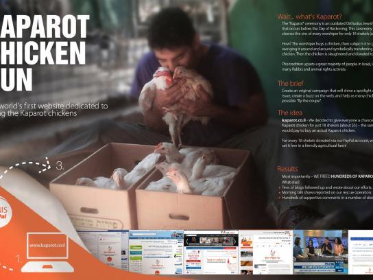 Animal Protection Association Digital Ad -  Kaparot Chicken Run