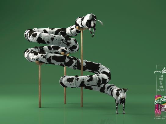 Bonfibra Print Ad - Cow