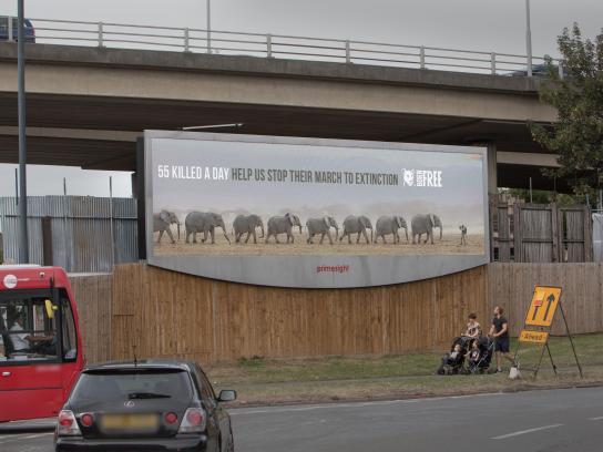 Born Free Foundation Outdoor Ad - World Elephant Day