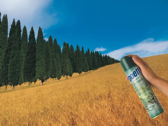 Poett Print Ad -  Forest