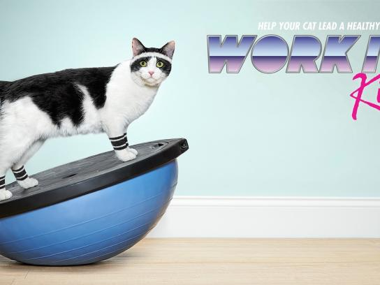 Temptations Print Ad -  Work it Kitty!, Bosu ball