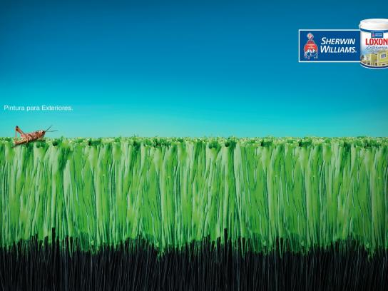 Sherwin-Williams Print Ad -  Grasshopper