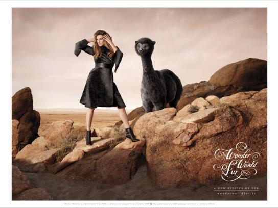 WWF Print Ad -  Buffaloon