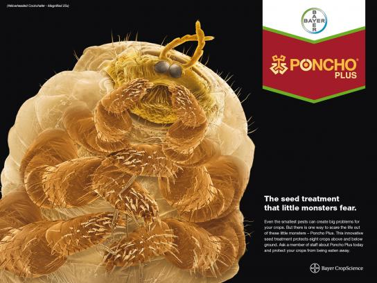 Bayer Print Ad -  Yellowheaded Cockchafer
