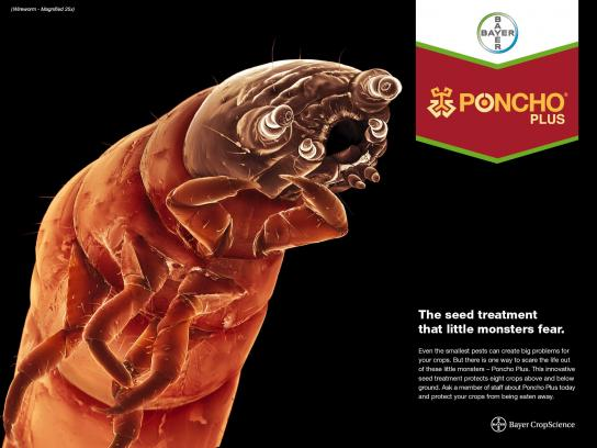Bayer Print Ad -  Wireworm