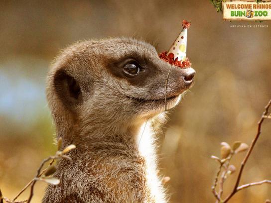 Buin Zoo Print Ad -  Meerkat