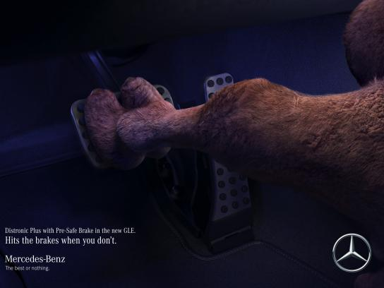 Mercedes Print Ad - Camel saves camel