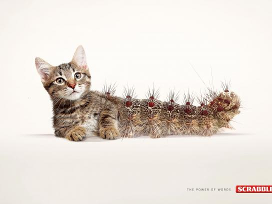 Scrabble Print Ad -  Cat-erpillar