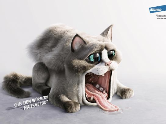 Elanco Print Ad - Pet House - Cat