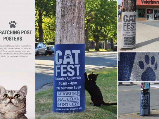 Museum of Natural History Outdoor Ad - Cat fest