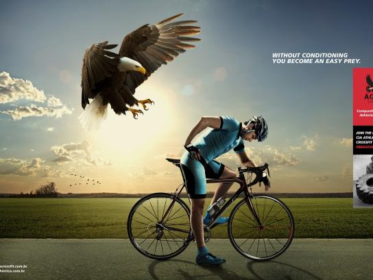 Cia Athletica Print Ad -  Eagle, 3