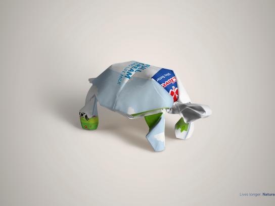 Clover Long Life Milk Print Ad - Tortoise