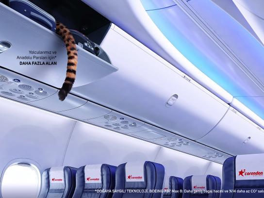 Corendon Airlines Print Ad - Anatolian Leopard