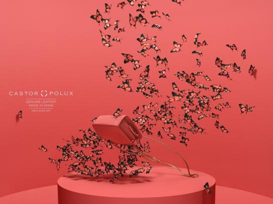 Castor Polux Print Ad -  Butterflies