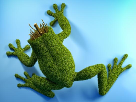 Amazon Watch Print Ad - Topiary Terror - Dart Frog