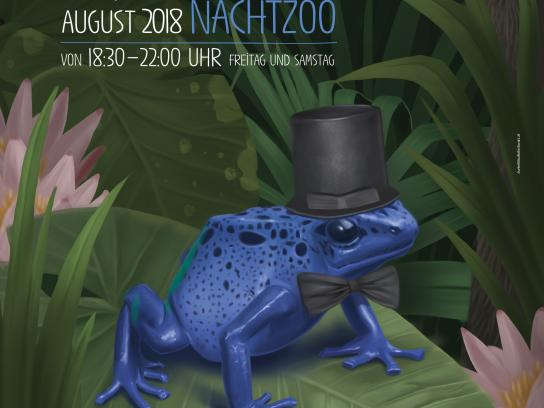 Salzburg Zoo Print Ad - Night Zoo - Frog