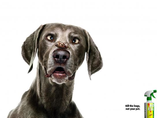 Bio Kill Print Ad -  Dog, 1