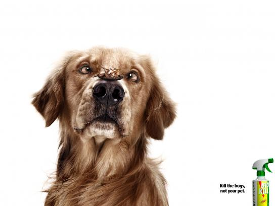 Bio Kill Print Ad -  Dog, 2