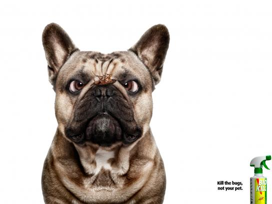 Bio Kill Print Ad -  Dog, 3