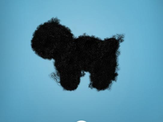 PETS & U Print Ad -  Hair, 1