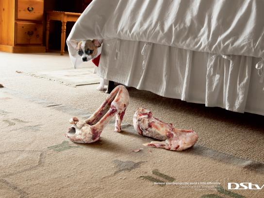 DStv Print Ad -  Shoes