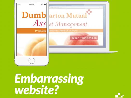 Nettl Digital Ad -  Dumb Ass Products