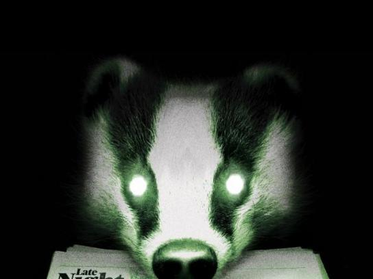 The Late Night Standard Outdoor Ad - Raccoon