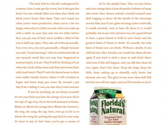 Florida's Natural Print Ad -  Dark side