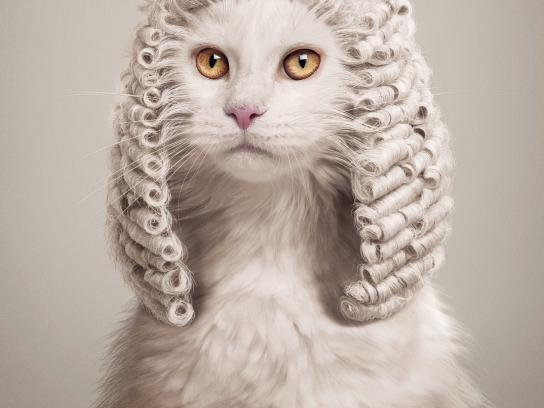 Foundation Animal in the Law Print Ad -  Animal judges, 2