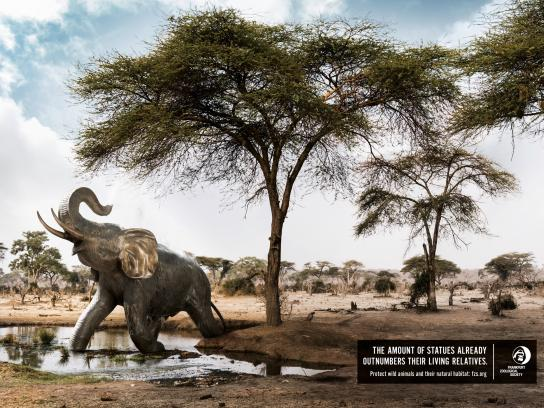 Frankfurt Zoological Society Print Ad - Elephants