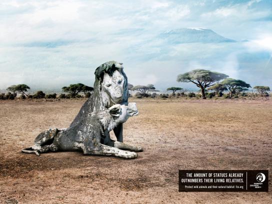 Frankfurt Zoological Society Print Ad - Lion