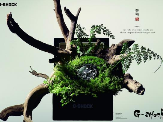 G-SHOCK Print Ad - Bonsai, 2