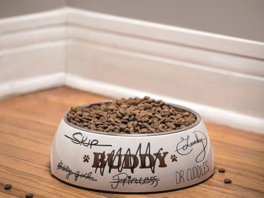 Toronto Humane Society Print Ad -  Puppy swap - bowl