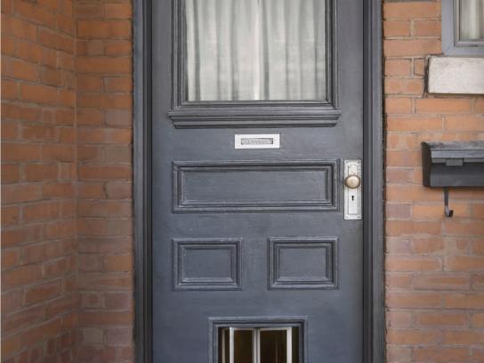 Toronto Humane Society Print Ad -  Puppy swap - door