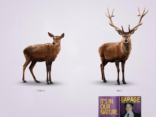 Garage Print Ad -  Deer