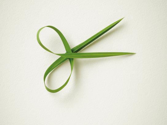 Gardena Print Ad - Smart Scissor