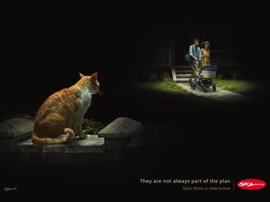 SPCA Outdoor Ad - Birth