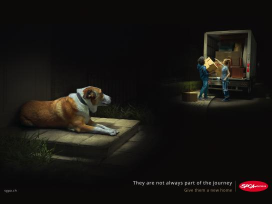 SPCA Outdoor Ad - Move